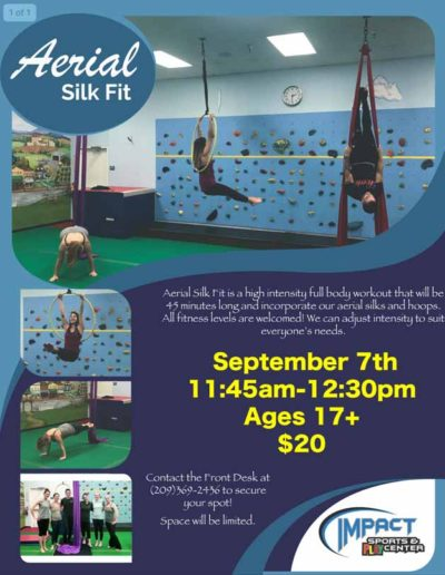 Sep 7th Aerial Silk