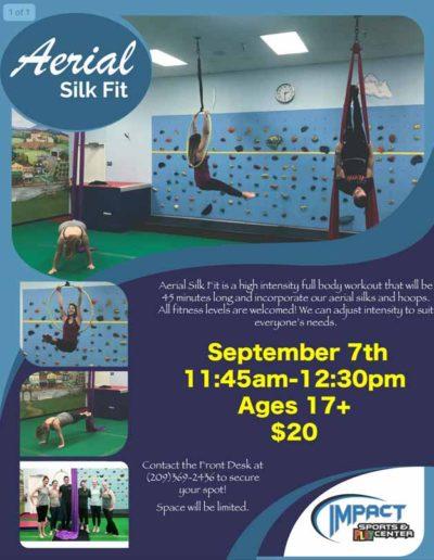 Sep 7th Aerial Silk